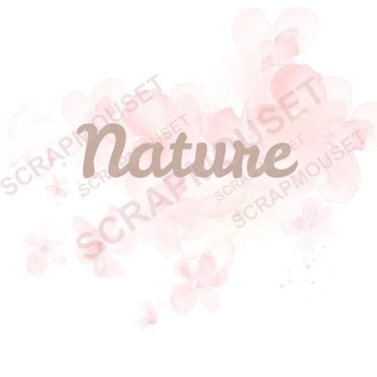 Mot Nature en carton bois...