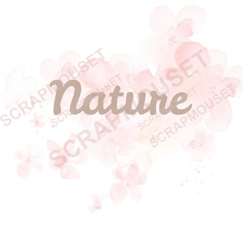 Mot Nature en carton bois SCRAPMOUSET