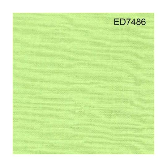 Papier cardstock uni 30 x 30 Vert Lime