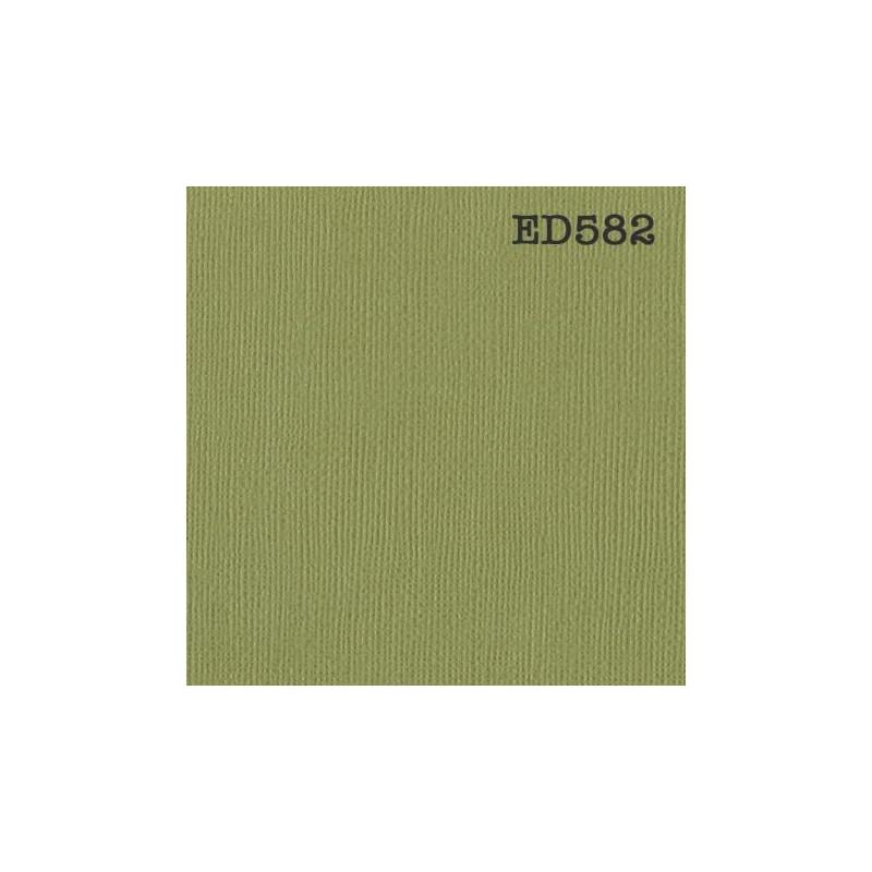 Papier cardstock uni 30 x 30 Vert Kiwi