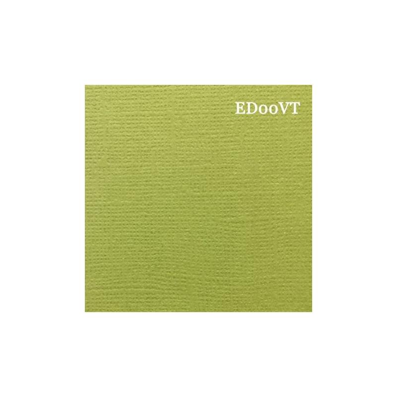 Papier cardstock uni 30 x 30 Vert de rage