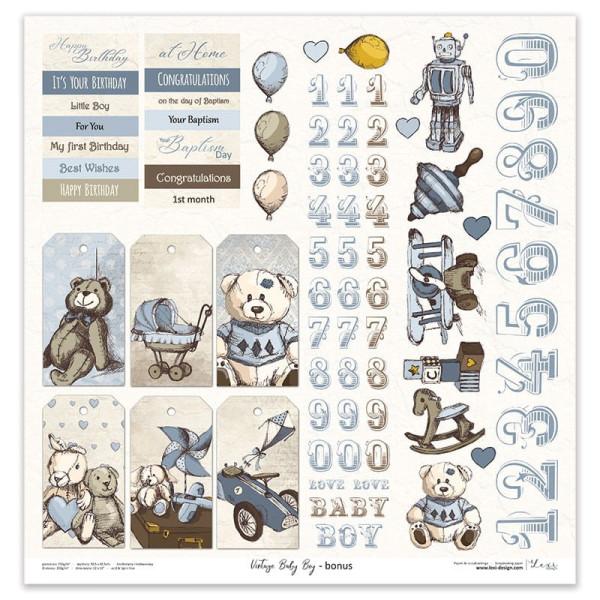 Set de 11 papiers scrapbooking 30 X 30 collection Vintage Baby Boy LEXI DESIGN