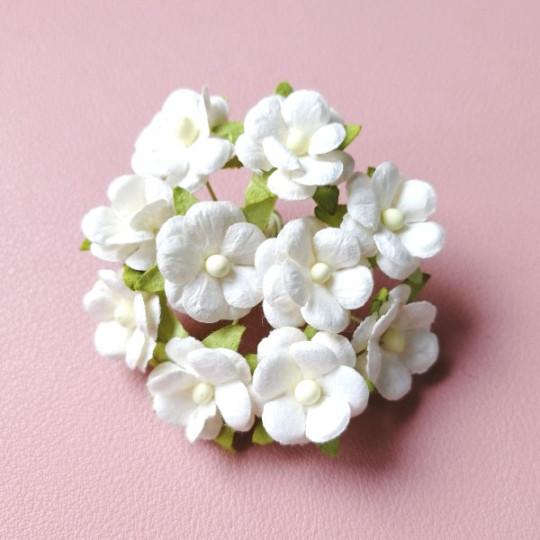 10 fleurs daisies 15 mm blanc en papier mûrier