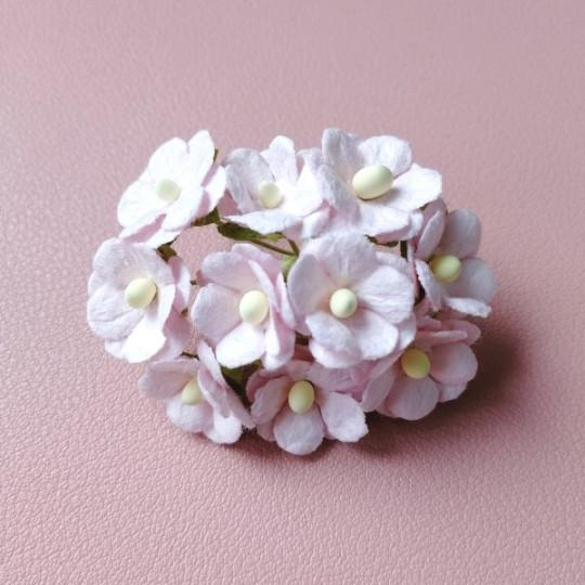10 fleurs daisies 15 mm rose pastel en papier mûrier