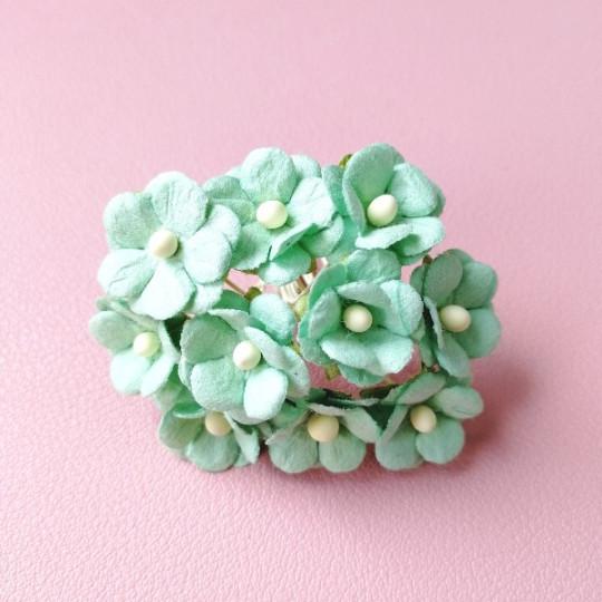 10 fleurs daisies 15 mm menthe en papier mûrier