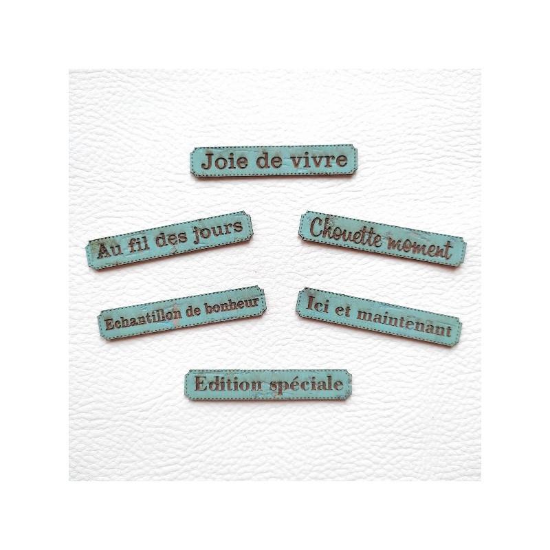 Lot 6 étiquettes thème Moments en cuir liège bleu SCRAPMOUSET