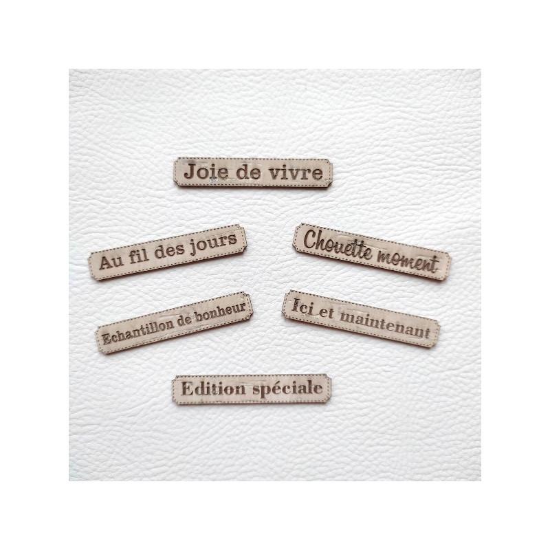 Lot 6 étiquette thème Moments en cuir liège beige SCRAPMOUSET