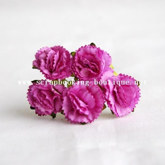 Oeillets violet