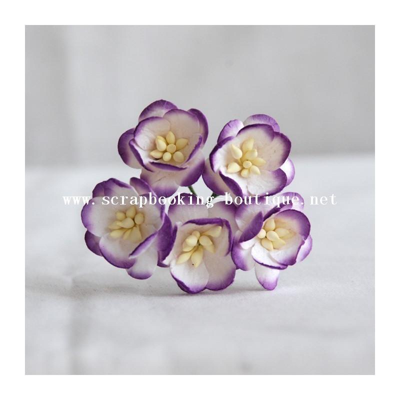 """Fleurs de cerisier """"blanc et violet"""""""