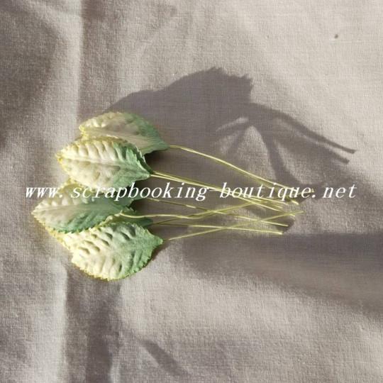 Feuilles bicolores 3.5 cm