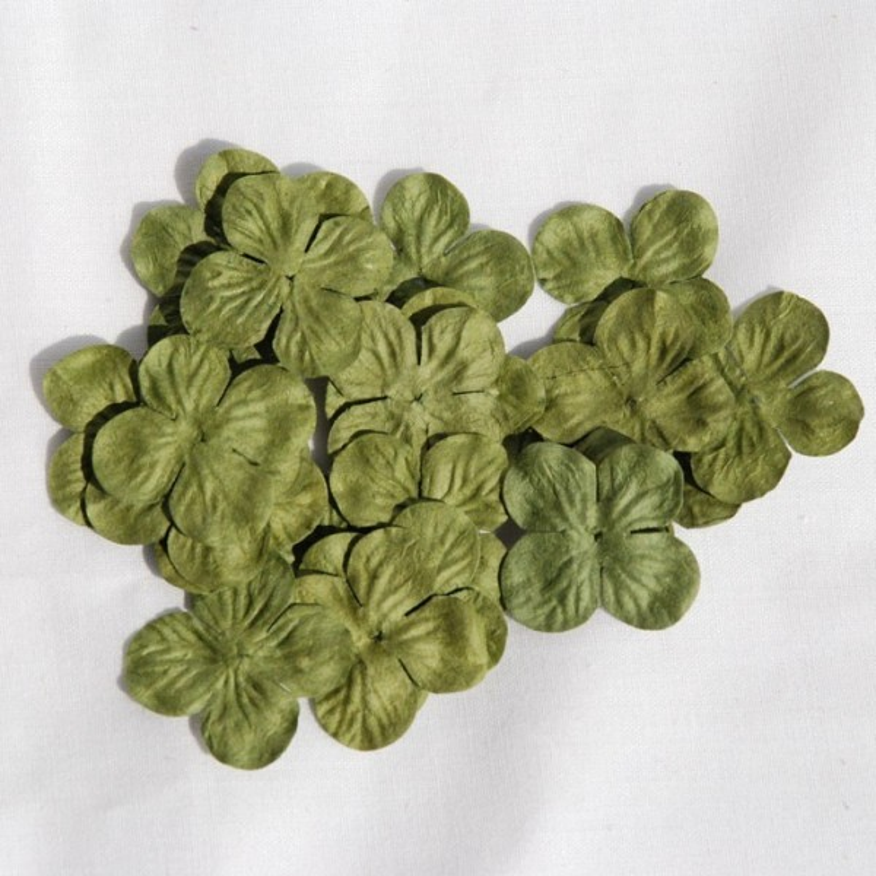 "Hydrangéas 2,5 cm""Olive"""