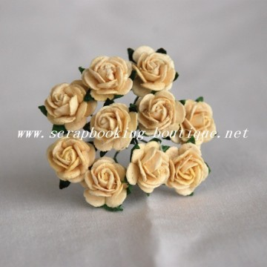 "Roses 1.5 cm ""Crème"""