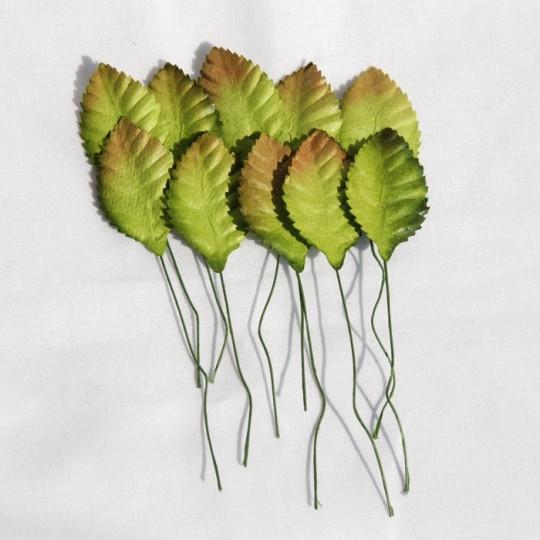 """Feuilles bicolores """"Vert-Marron"""" 3.5 cm"""