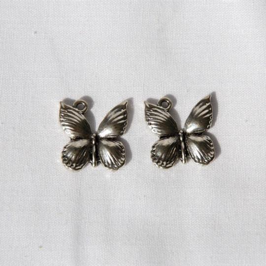 lot papillons ailes bombées
