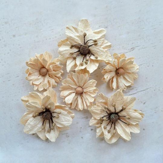 "Fleurs ""Amarillo Ivory"" de Little Birdie"