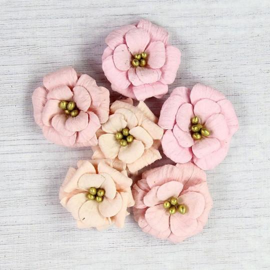 "Fleurs ""Serabella Blush"" de Little Birdie"