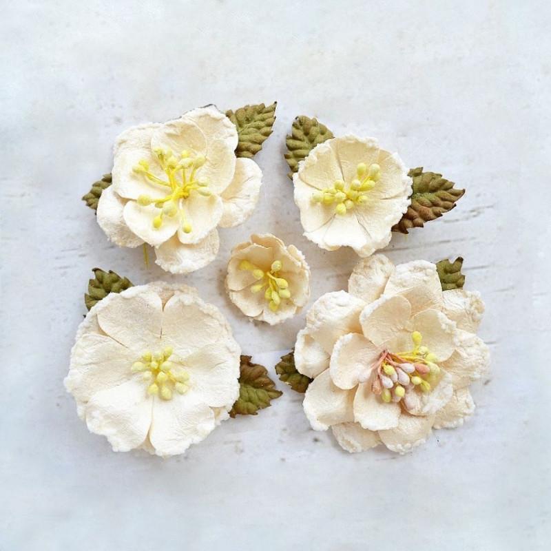 """Fleurs """"Cora Ivory"""" de Little Birdie"""