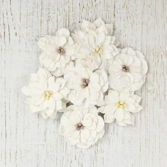 "Fleurs ""Serenade Vintage"" de Little Birdie"