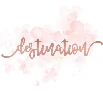 "Mot ""destination"" en Acrylique Rose Gold 15,6 x 3,2 cm - Scrapmouset"