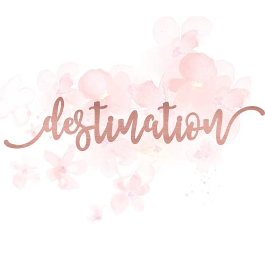 """Mot """"destination"""" en Acrylique Rose Gold 15,6 x 3,2 cm - Scrapmouset"""