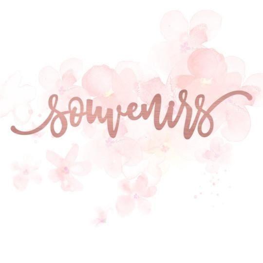"""Mot """"souvenirs"""" en Acrylique Rose Gold 13,8 x 2,8 cm - Scrapmouset"""