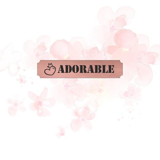 """Etiquette""""zoom"""" en Acrylique Rose Gold 10,1 x 2,9 cm - Scrapmouset"""