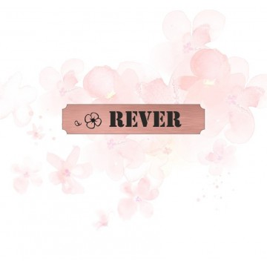 """Etiquette """"rêver"""" en Acrylique Rose Gold 4,8 x 1 cm - Scrapmouset"""