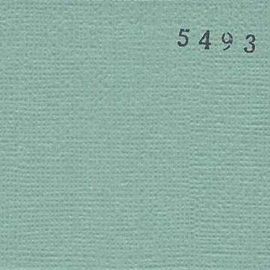 """Cardstock 30 x 30 """"Vert de gris"""""""