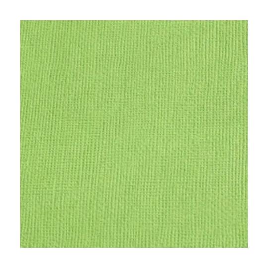 """Cardstock 30 x 30 """"Vert"""""""