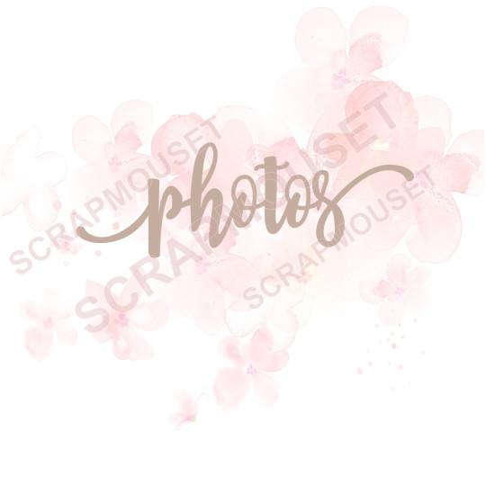 Mot en Carton bois - Photos - 10,4 x 3,6 cm