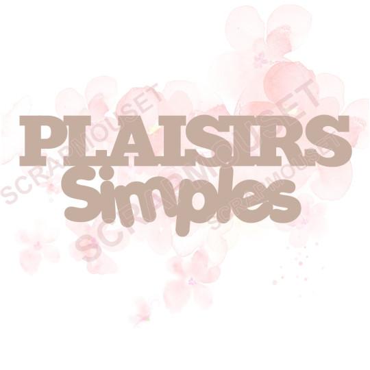 Mot Plaisirs simples en carton bois SCRAPMOUSET 8,9 x 3,3 cm