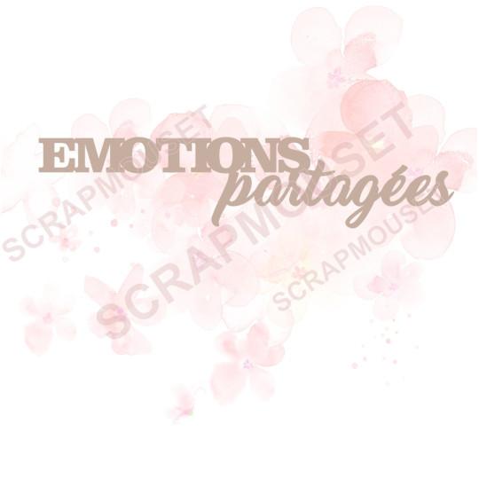 Mots Emotions partagées en carton bois SCRAPMOUSET