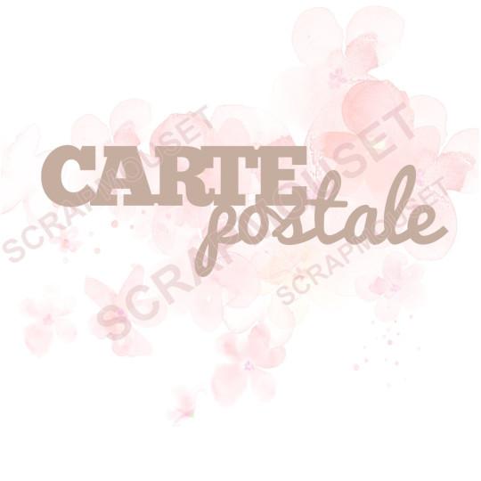 Mot Carte postale en carton bois SCRAPMOUSET