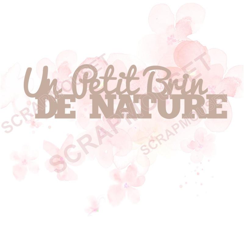 Mot Un petit brin de nature en carton bois SCRAPMOUSET