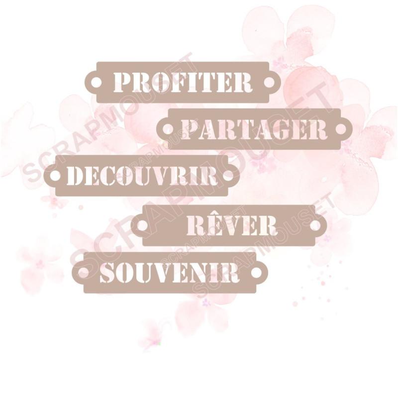 Ensemble de 5 étiquettes sur le thème DECOUVERTE en carton bois SCRAPMOUSET