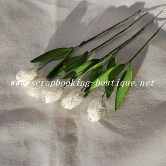 Tulipes blanches en papier mûrier