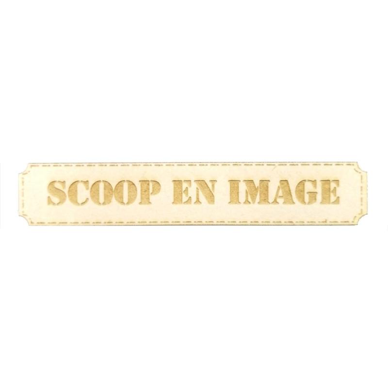 Étiquette rectangulaire scoop en image en carton bois Scrapmouset